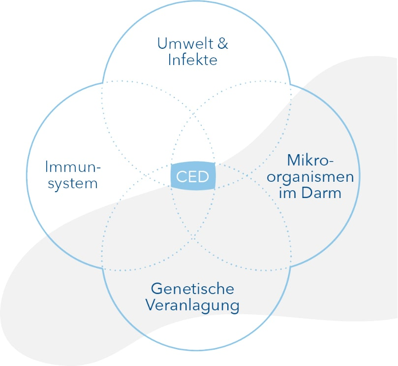 Auslöser von Colitis Ulcerosa, Umwelt, Immunsystem, Mikroorganismen, Genetische Veranlagung