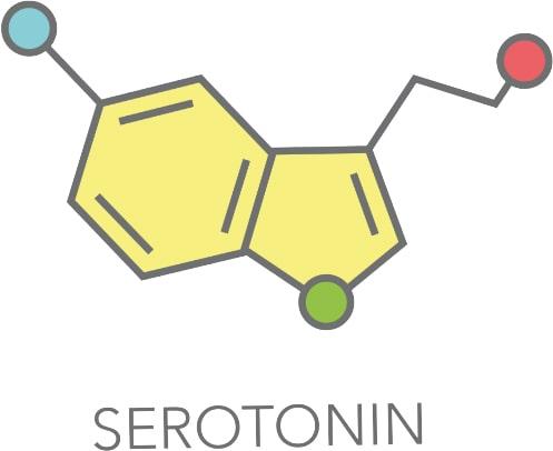 Serotonin Molekül